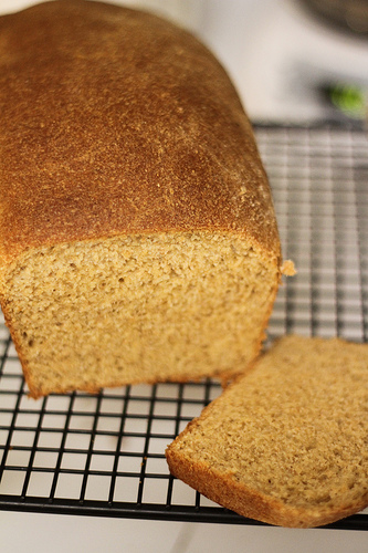 Fool Proof Whole Wheat Bread