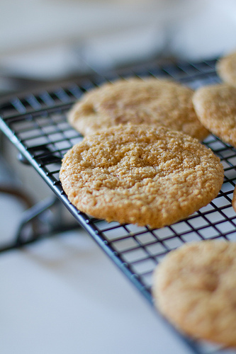 Whole Grain Sugar Cookies